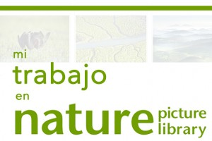 naturepl